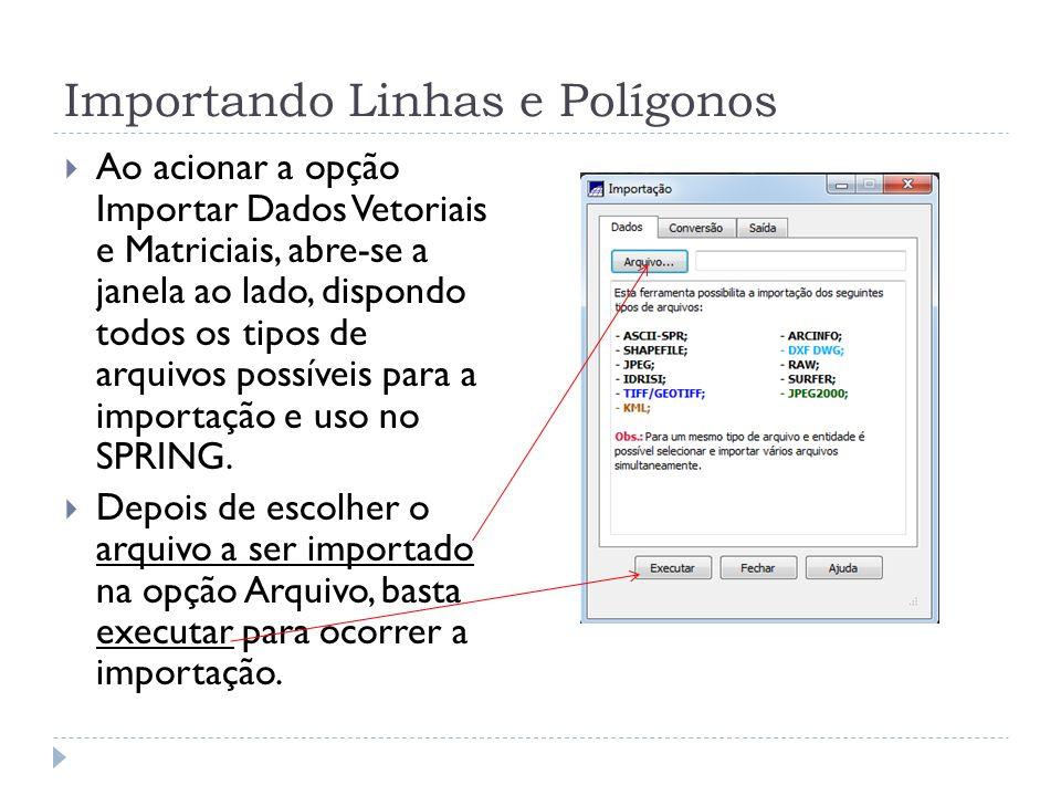 Importando Linhas e Polígonos Ao acionar a opção Importar Dados Vetoriais e Matriciais, abre-se a janela ao lado, dispondo todos os tipos de arquivos