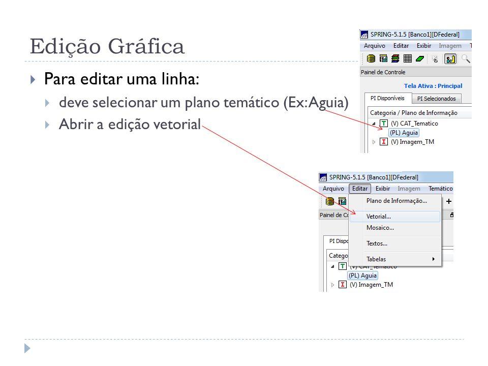Edição Gráfica Para editar uma linha: deve selecionar um plano temático (Ex: Aguia) Abrir a edição vetorial