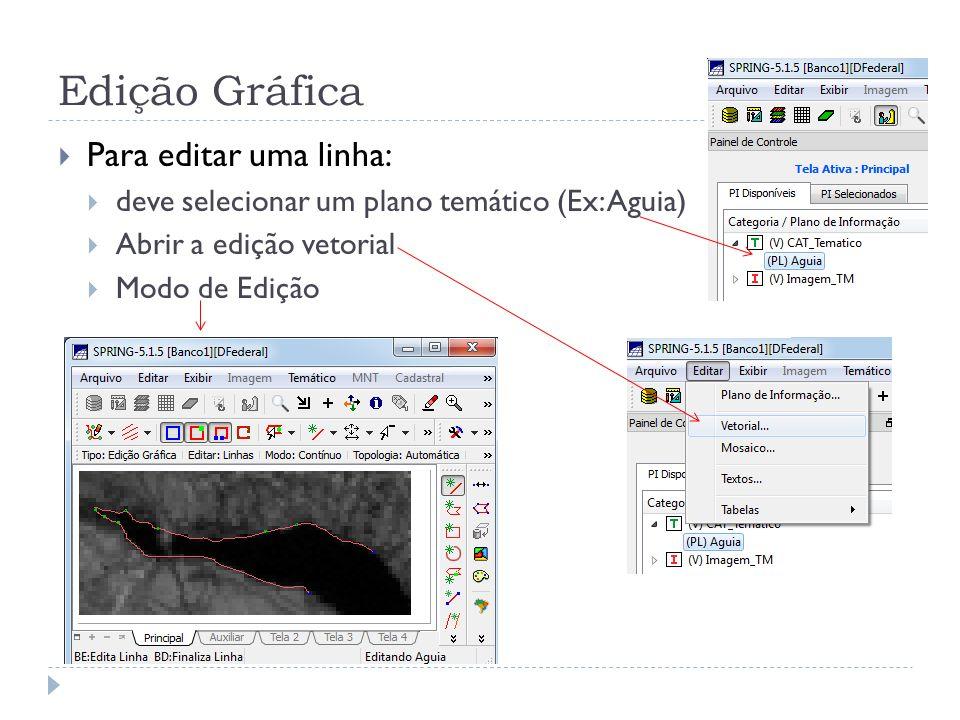 Edição Gráfica Para editar uma linha: deve selecionar um plano temático (Ex: Aguia) Abrir a edição vetorial Modo de Edição