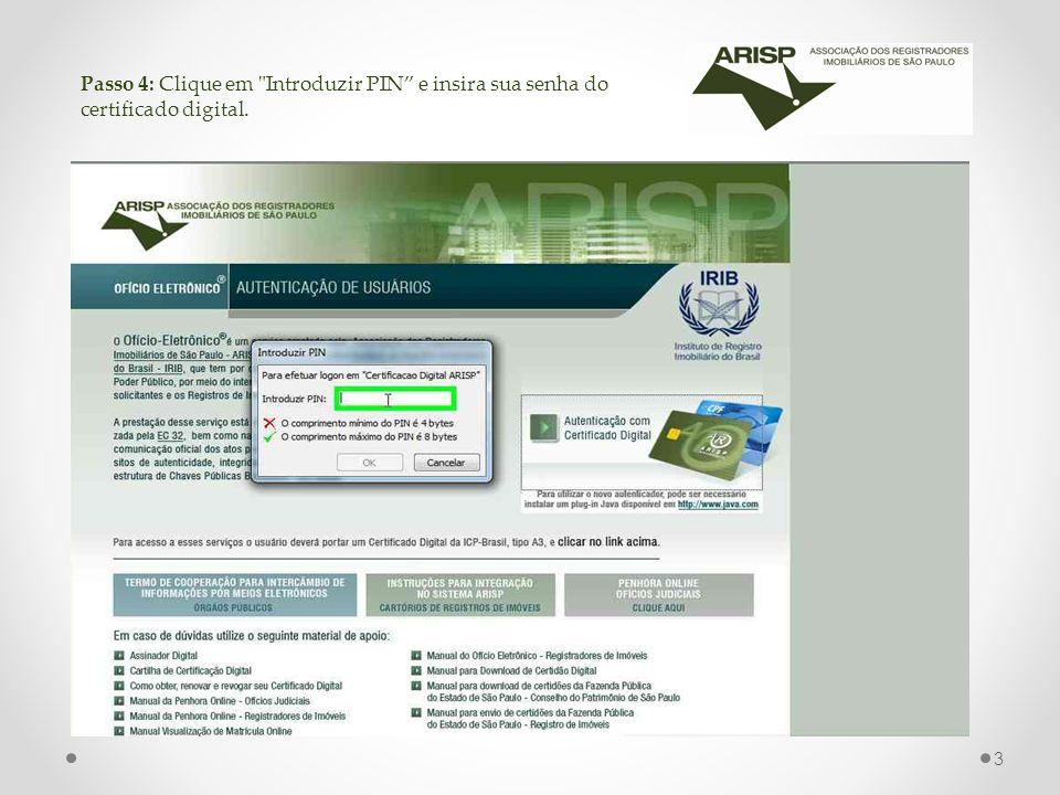 Passo 4: Clique em Introduzir PIN e insira sua senha do certificado digital. 3