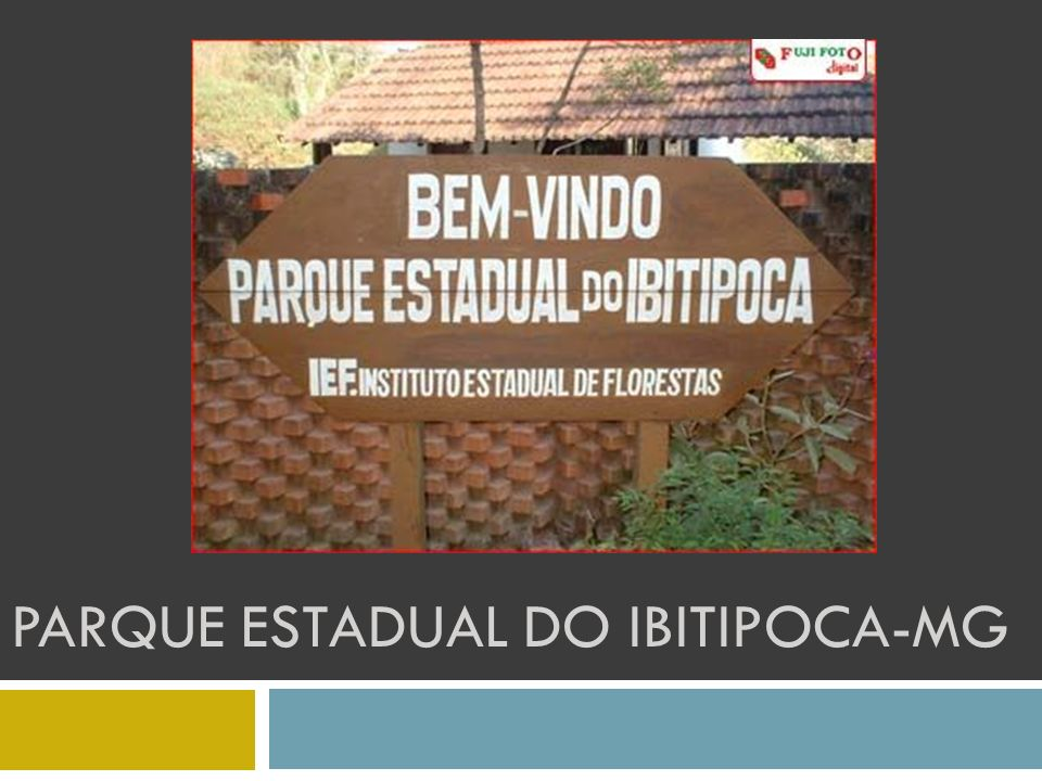 PARQUE ESTADUAL DO IBITIPOCA-MG