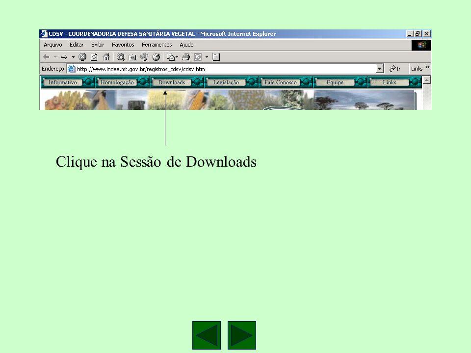 Clique na Sessão de Downloads