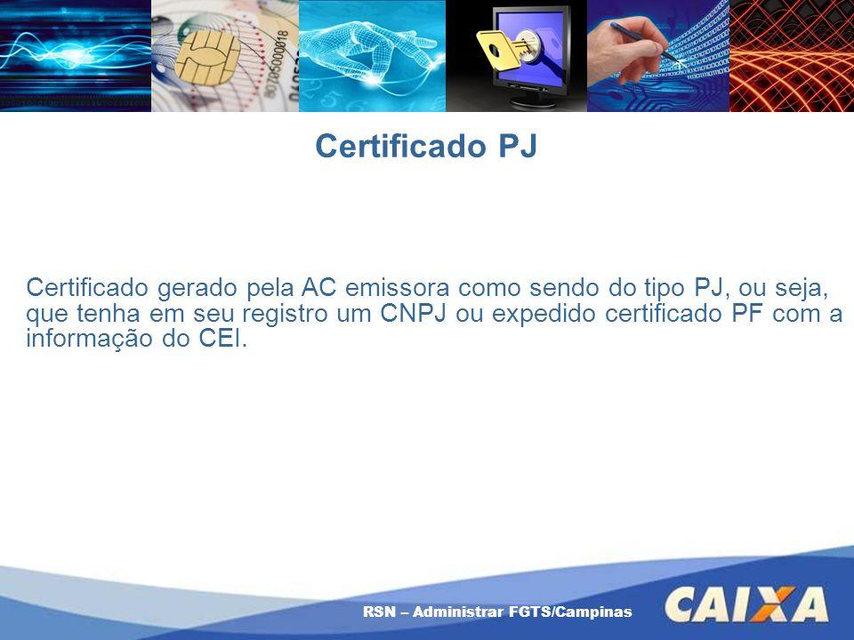 RSN – Administrar FGTS/Campinas Certificado PJ Certificado gerado pela AC emissora como sendo do tipo PJ, ou seja, que tenha em seu registro um CNPJ o