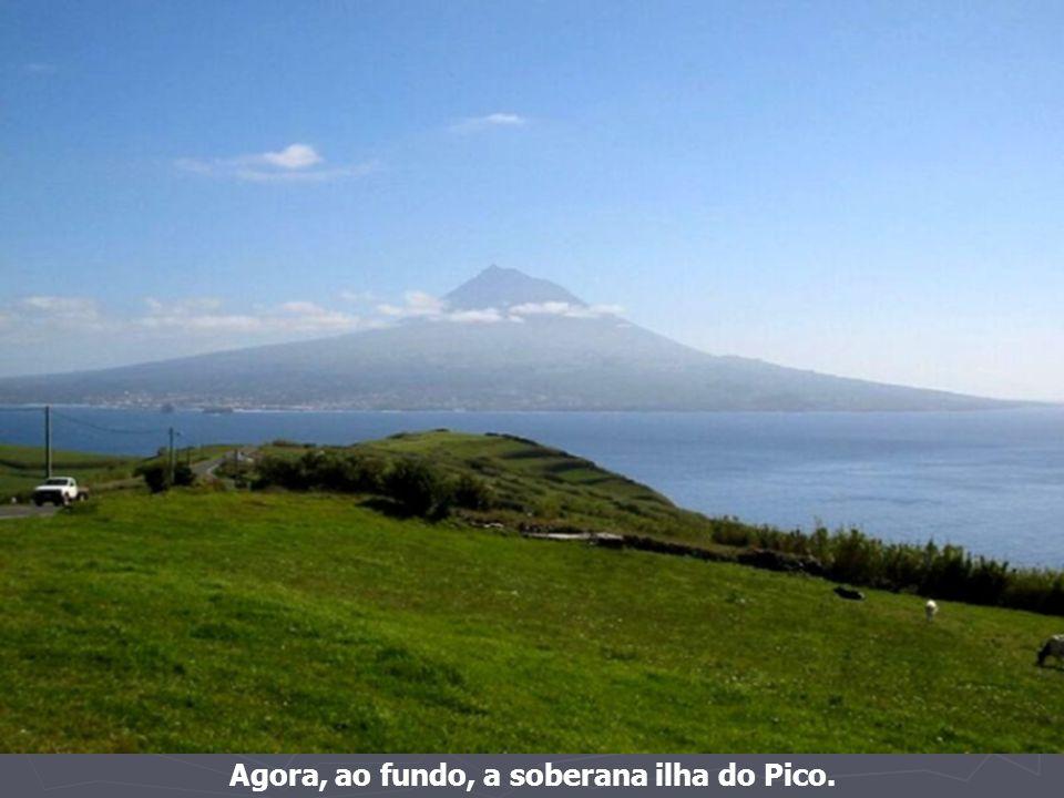 Paisagem de cultura da vinha na ilha do Pico (ao fundo, a Ilha do Faial)
