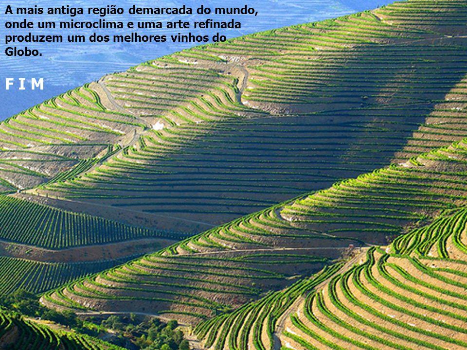Região demarcada dos vinhos do Porto