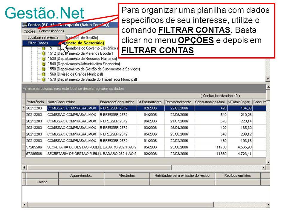 Gestão.Net Para organizar uma planilha com dados específicos de seu interesse, utilize o comando FILTRAR CONTAS. Basta clicar no menu OPÇÕES e depois