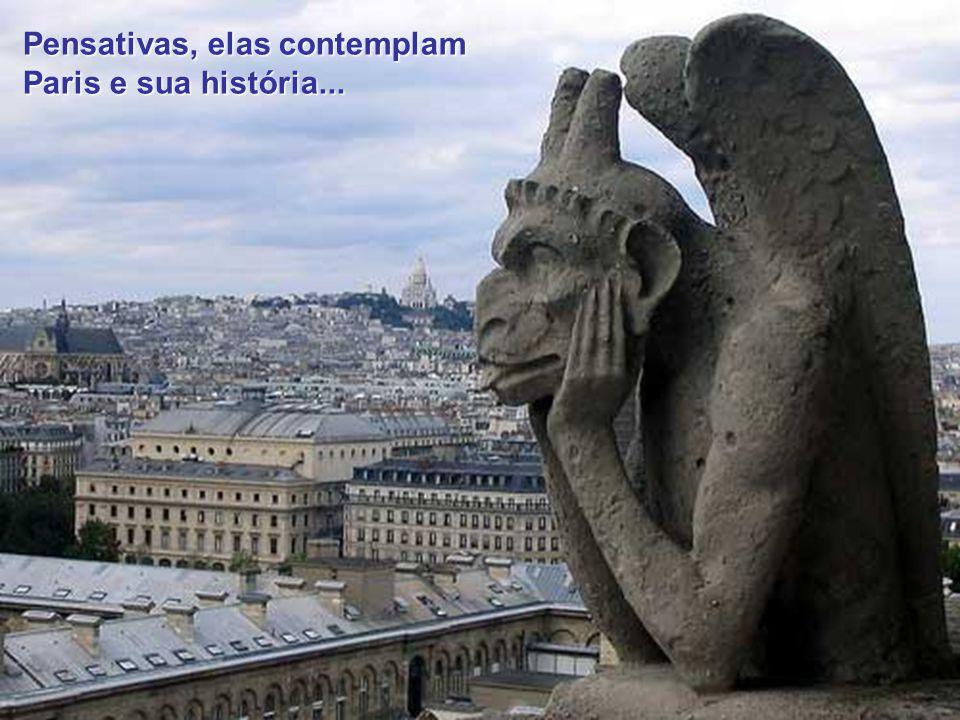 Escondiadas entre as torres, as gárgulas (chimères ou quimeras) foram colocadas por Viollet-le-Duc, com meras funções decorativas e talvez como homenagem ao romance de Victor Hugo....