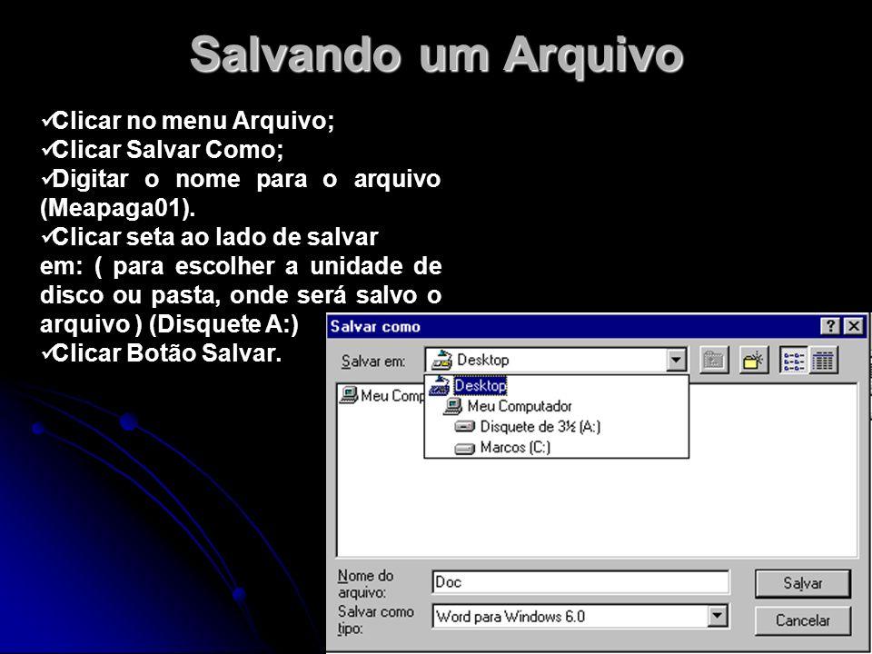 Salvando um Arquivo Clicar no menu Arquivo; Clicar Salvar Como; Digitar o nome para o arquivo (Meapaga01). Clicar seta ao lado de salvar em: ( para es