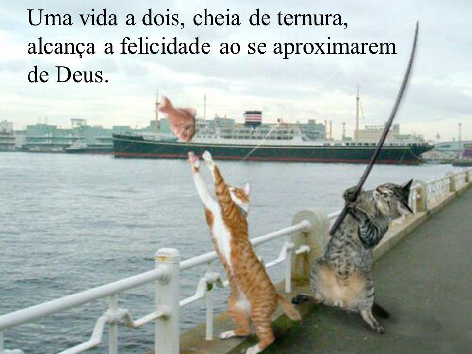 Les meilleures photos de L année 2005 D après NBC Uma vida a dois, cheia de ternura, alcança a felicidade ao se aproximarem de Deus.