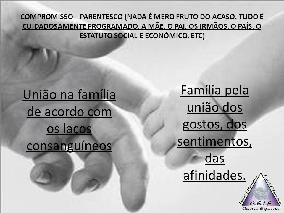 COMPROMISSO – PARENTESCO (NADA É MERO FRUTO DO ACASO. TUDO É CUIDADOSAMENTE PROGRAMADO, A MÃE, O PAI, OS IRMÃOS, O PAÍS, O ESTATUTO SOCIAL E ECONÓMICO