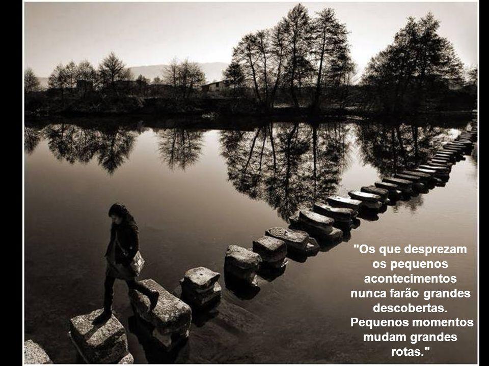 A vaidade é o caminho mais curto para o paraíso da satisfação, porém ela é, ao mesmo tempo, o solo onde a burrice melhor se desenvolve.