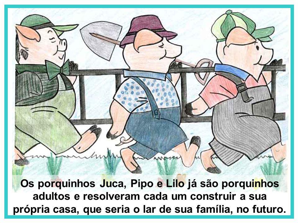 Os porquinhos Juca, Pipo e Lilo já são porquinhos adultos e resolveram cada um construir a sua própria casa, que seria o lar de sua família, no futuro