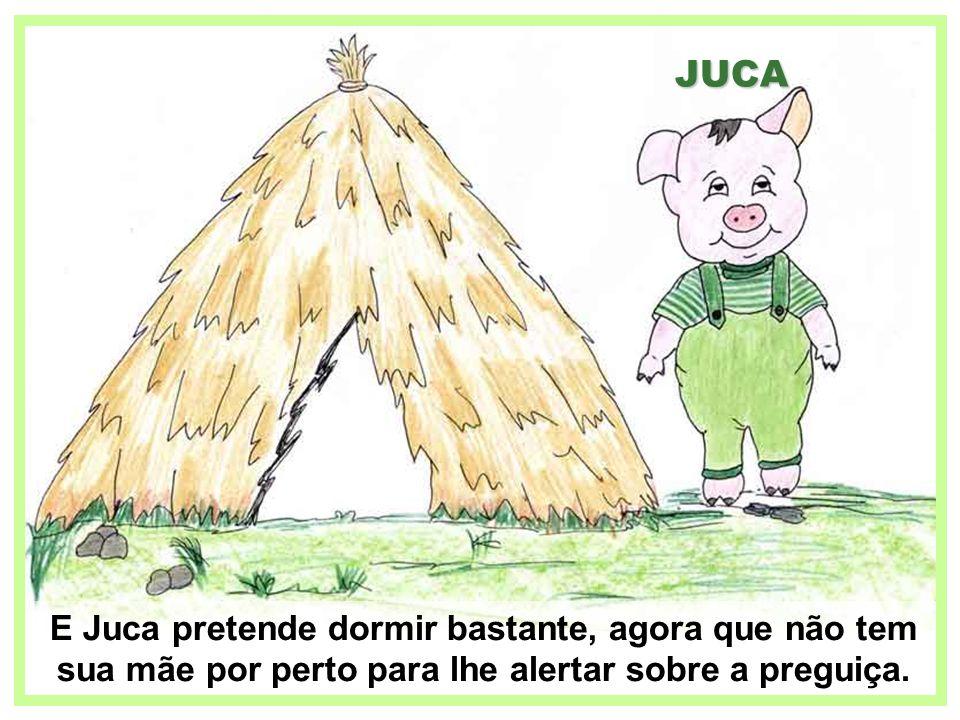 JUCA E Juca pretende dormir bastante, agora que não tem sua mãe por perto para lhe alertar sobre a preguiça.