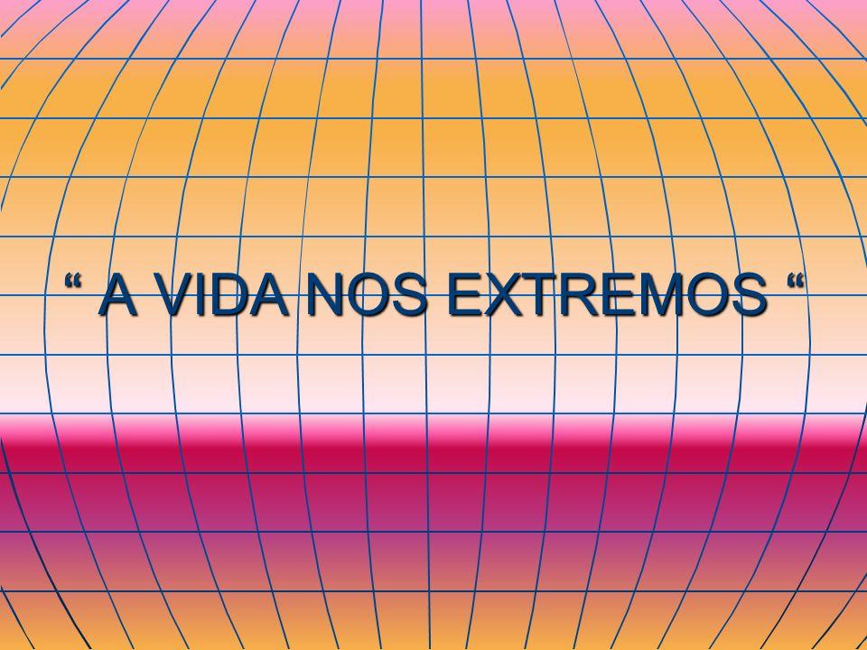 A VIDA NOS EXTREMOS A VIDA NOS EXTREMOS