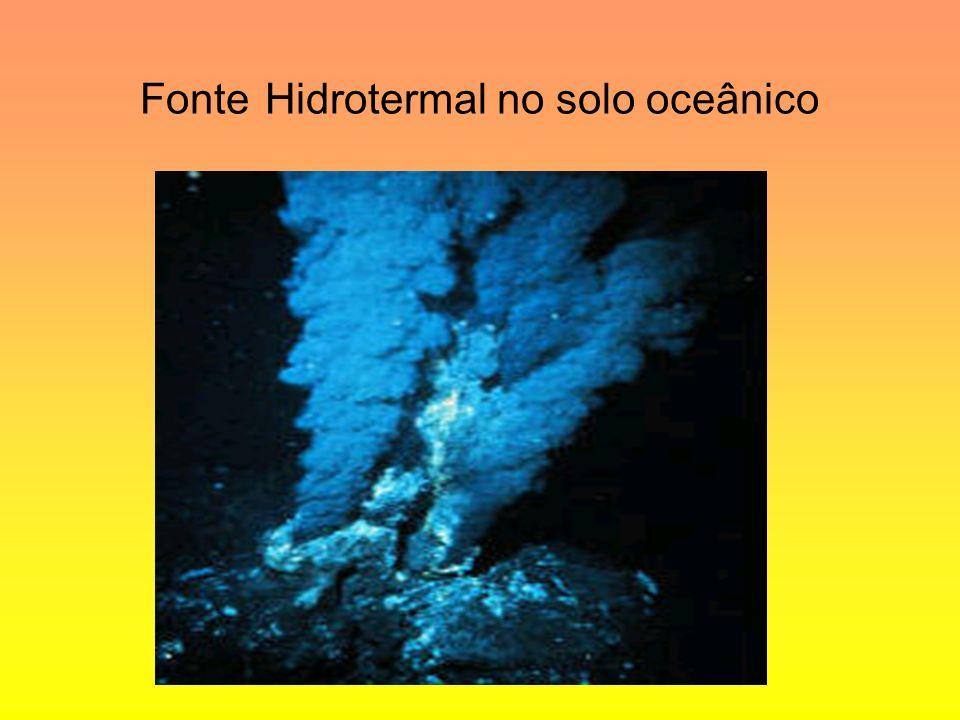 Fonte Hidrotermal no solo oceânico