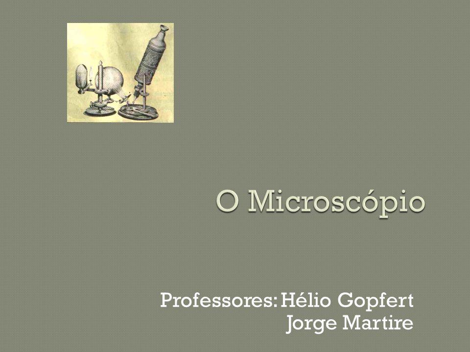 Hooke observou cortes finos de cortiça, que se apresentavam ao microscópio com um aspecto similar a pequenos favos de mel empilhados.