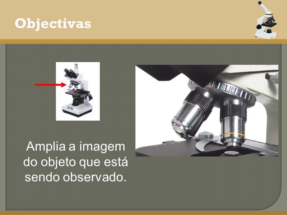 Objectivas Amplia a imagem do objeto que está sendo observado.