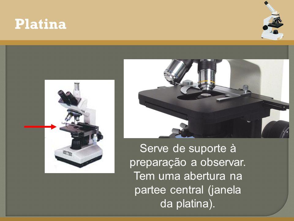Platina Serve de suporte à preparação a observar. Tem uma abertura na partee central (janela da platina).