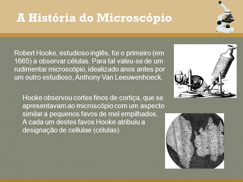 Hooke observou cortes finos de cortiça, que se apresentavam ao microscópio com um aspecto similar a pequenos favos de mel empilhados. A cada um destes