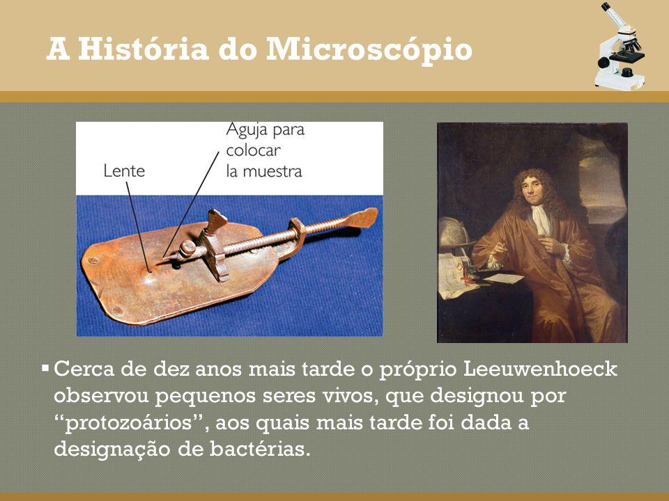 Cerca de dez anos mais tarde o próprio Leeuwenhoeck observou pequenos seres vivos, que designou por protozoários, aos quais mais tarde foi dada a desi