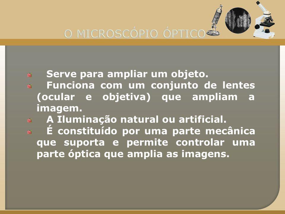 Ocular Canhão Revólver Objetivas Braço Platina Fonte luminosa Diafragma Pé ou base Parafuso macromético Parafuso micromético Pinças Condensador