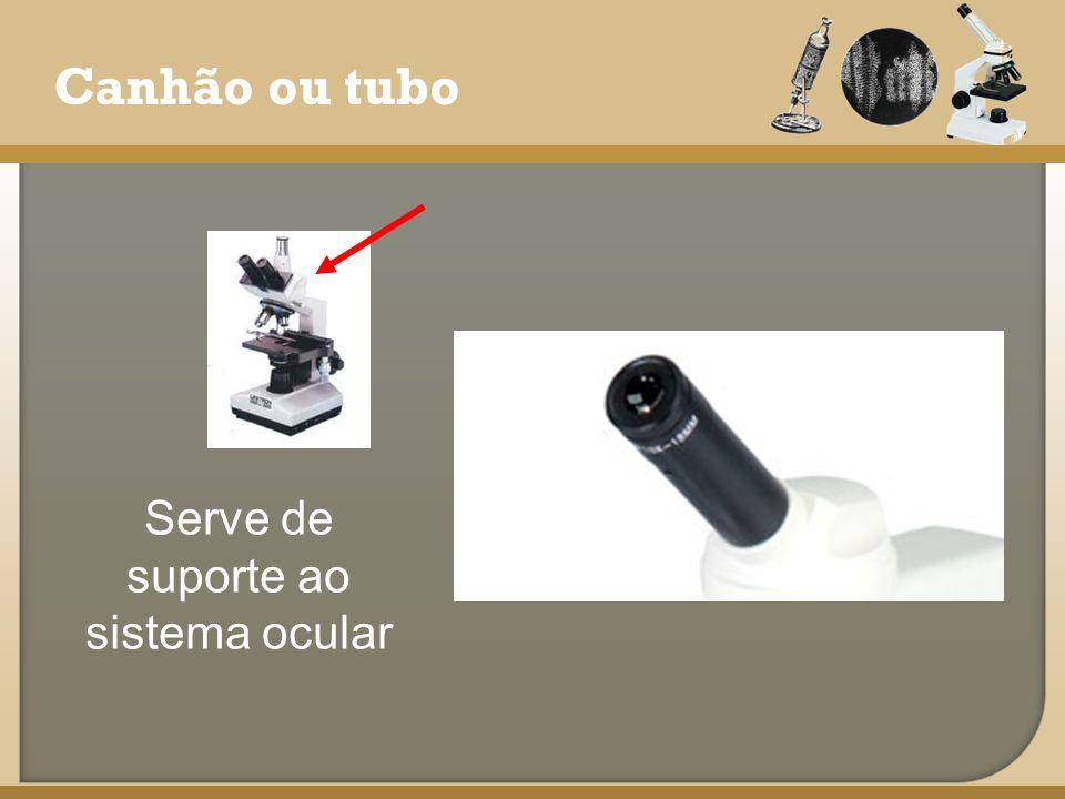 Canhão ou tubo Serve de suporte ao sistema ocular