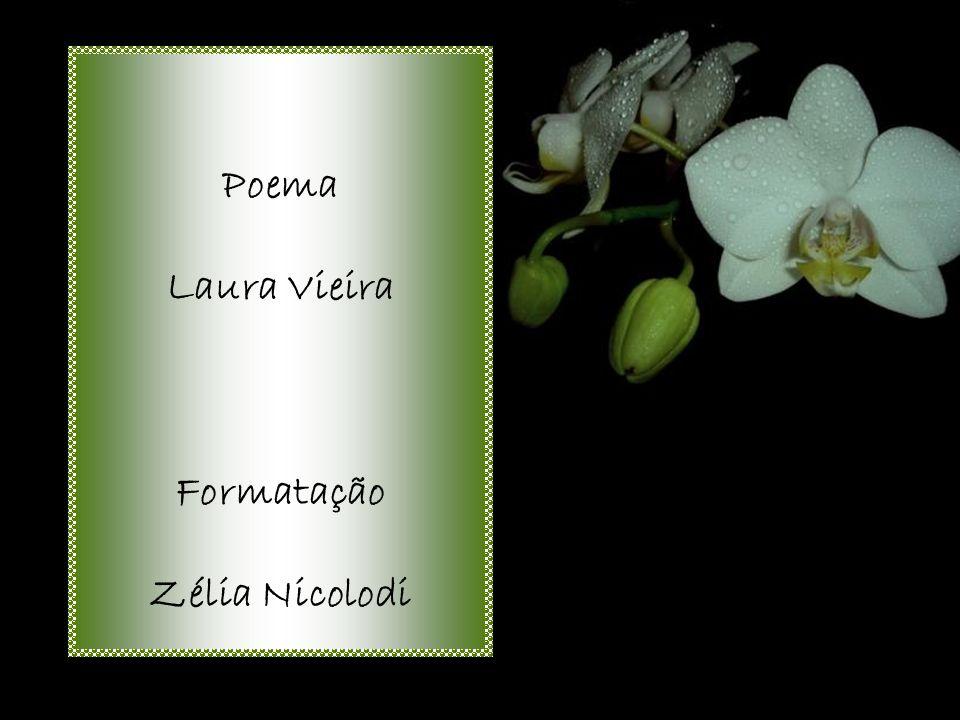Poema Laura Vieira Formatação Zélia Nicolodi
