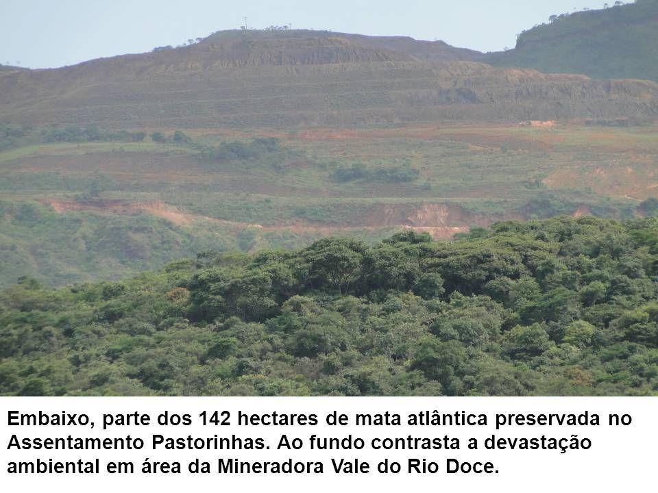 Embaixo, parte dos 142 hectares de mata atlântica preservada no Assentamento Pastorinhas. Ao fundo contrasta a devastação ambiental em área da Minerad