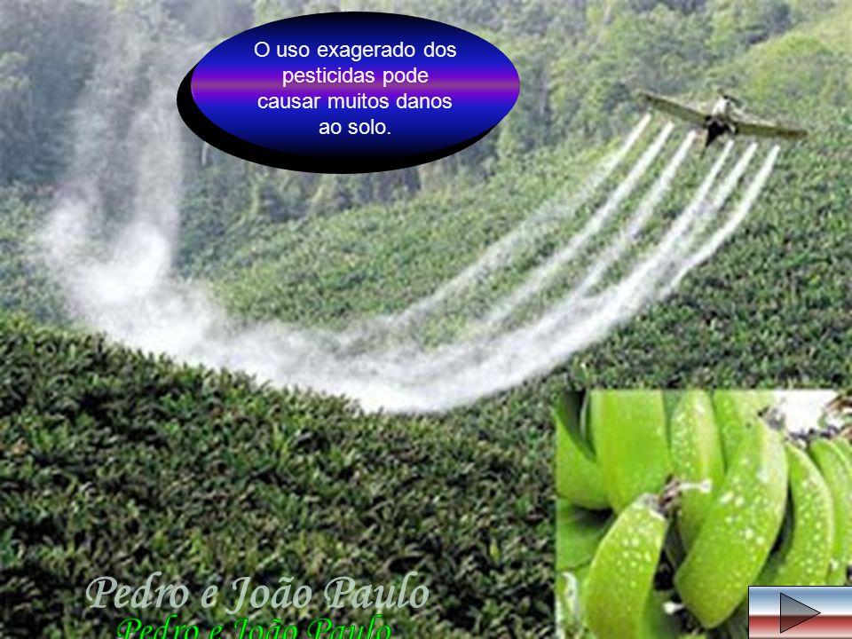 O uso exagerado dos pesticidas pode causar muitos danos ao solo.