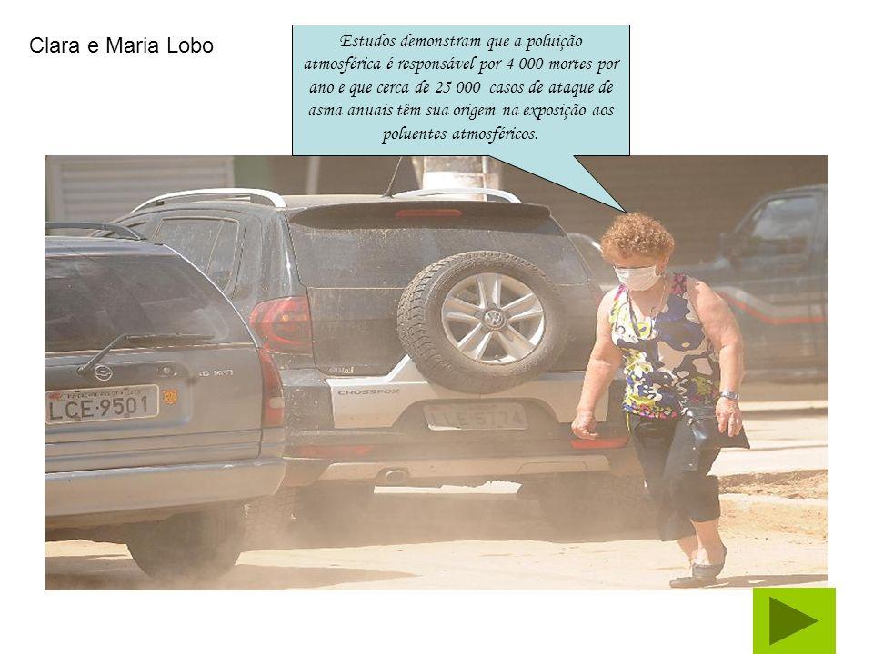 Estudos demonstram que a poluição atmosférica é responsável por 4 000 mortes por ano e que cerca de 25 000 casos de ataque de asma anuais têm sua origem na exposição aos poluentes atmosféricos.