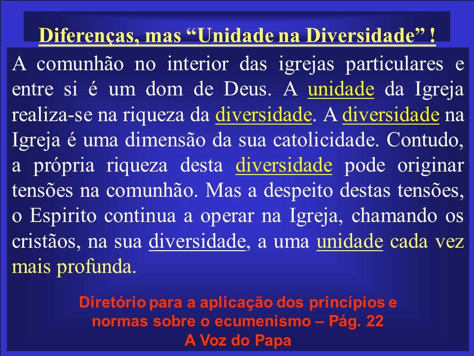 A comunhão no interior das igrejas particulares e entre si é um dom de Deus. A unidade da Igreja realiza-se na riqueza da diversidade. A diversidade n