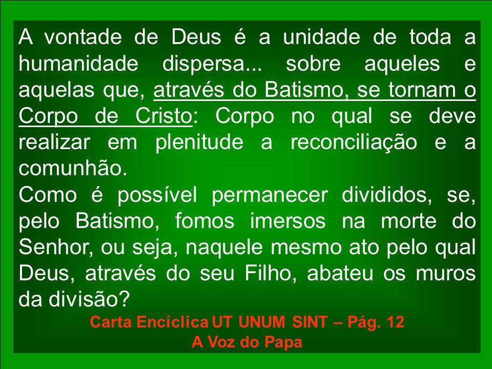 A vontade de Deus é a unidade de toda a humanidade dispersa... sobre aqueles e aquelas que, através do Batismo, se tornam o Corpo de Cristo: Corpo no
