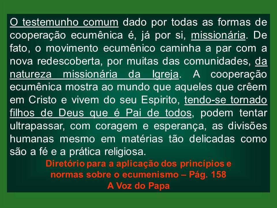 O testemunho comum dado por todas as formas de cooperação ecumênica é, já por si, missionária. De fato, o movimento ecumênico caminha a par com a nova