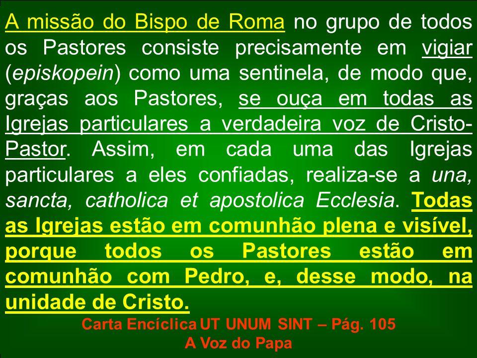 A missão do Bispo de Roma no grupo de todos os Pastores consiste precisamente em vigiar (episkopein) como uma sentinela, de modo que, graças aos Pasto