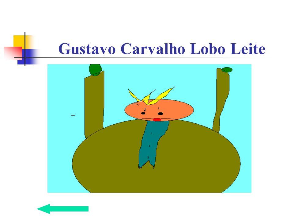 Gustavo Carvalho Lobo Leite