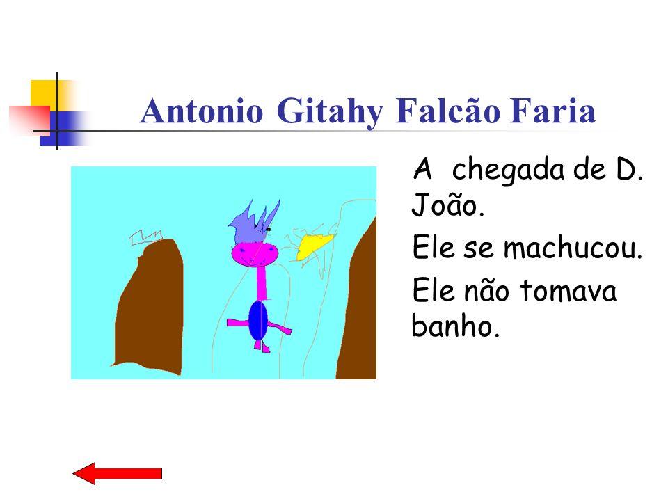 Antonio Gitahy Falcão Faria A chegada de D. João. Ele se machucou. Ele não tomava banho.