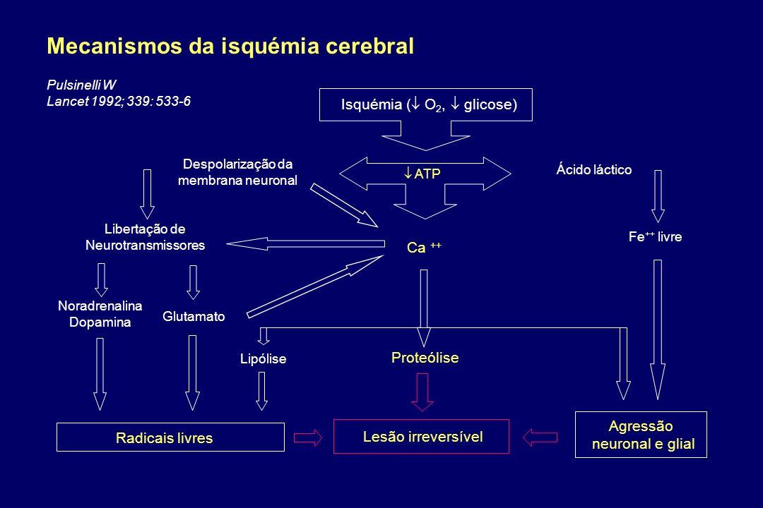 Isquémia ( O 2, glicose) ATP Despolarização da membrana neuronal Libertação de Neurotransmissores Ácido láctico Fe ++ livre Lesão irreversível Lipólis
