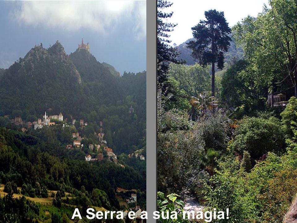 A Serra, é um monumento em si mesmo.