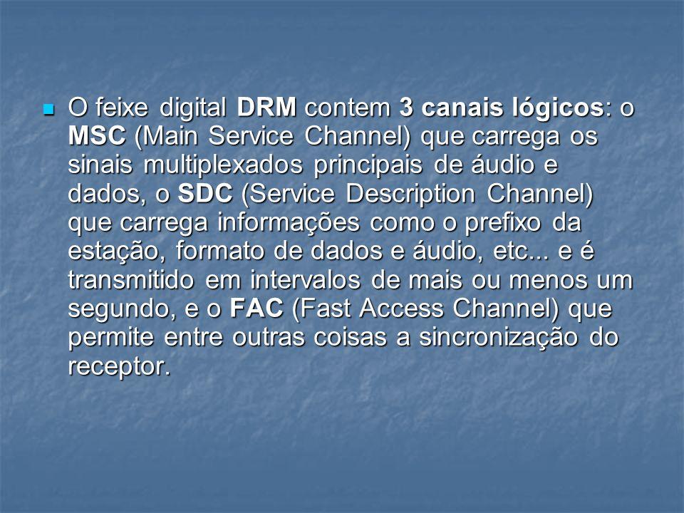 O feixe digital DRM contem 3 canais lógicos: o MSC (Main Service Channel) que carrega os sinais multiplexados principais de áudio e dados, o SDC (Serv
