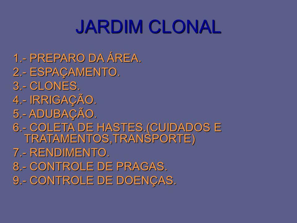 JARDIM CLONAL 1.- PREPARO DA ÁREA. 2.- ESPAÇAMENTO. 3.- CLONES. 4.- IRRIGAÇÃO. 5.- ADUBAÇÃO. 6.- COLETA DE HASTES.(CUIDADOS E TRATAMENTOS,TRANSPORTE)