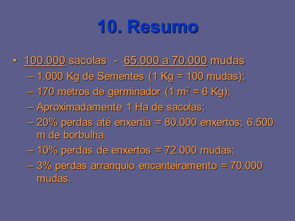 10. Resumo 100.000 sacolas - 65.000 a 70.000 mudas100.000 sacolas - 65.000 a 70.000 mudas –1.000 Kg de Sementes (1 Kg = 100 mudas); –170 metros de ger
