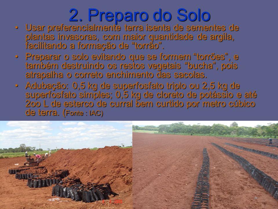 2. Preparo do Solo Usar preferencialmente terra isenta de sementes de plantas invasoras, com maior quantidade de argila, facilitando a formação de tor