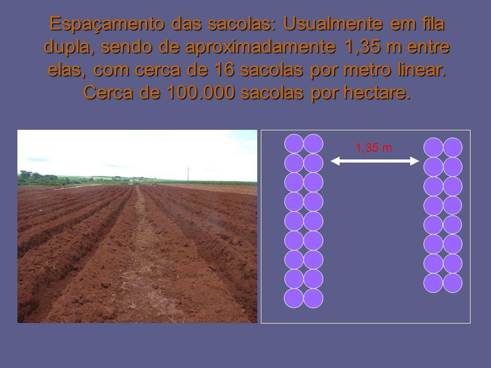 1,35 m Espaçamento das sacolas: Usualmente em fila dupla, sendo de aproximadamente 1,35 m entre elas, com cerca de 16 sacolas por metro linear. Cerca