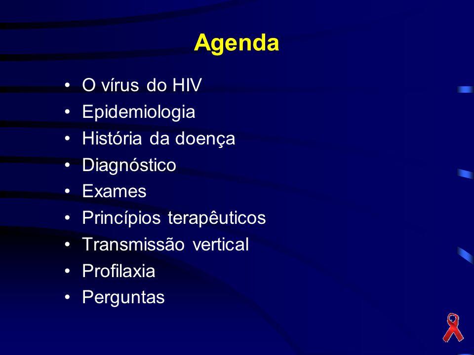 Vírus HIV-1 Origem: várias teorias Classificação: Retrovirus (FIV,SIV...) Subtipos –Grupo M –Grupo O –Grupo N