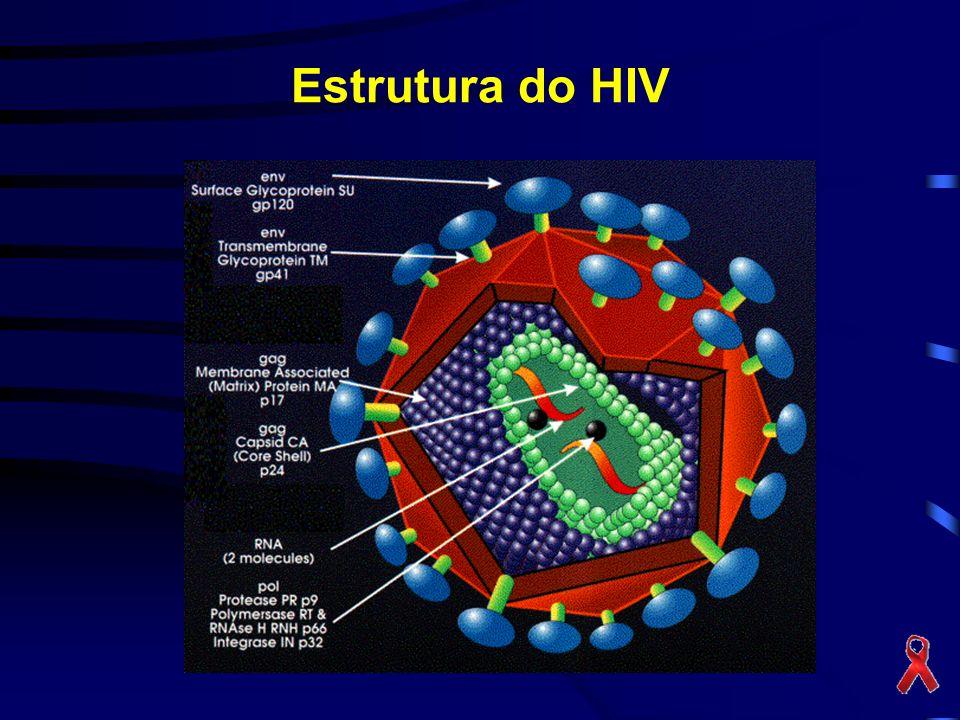 Estrutura do HIV