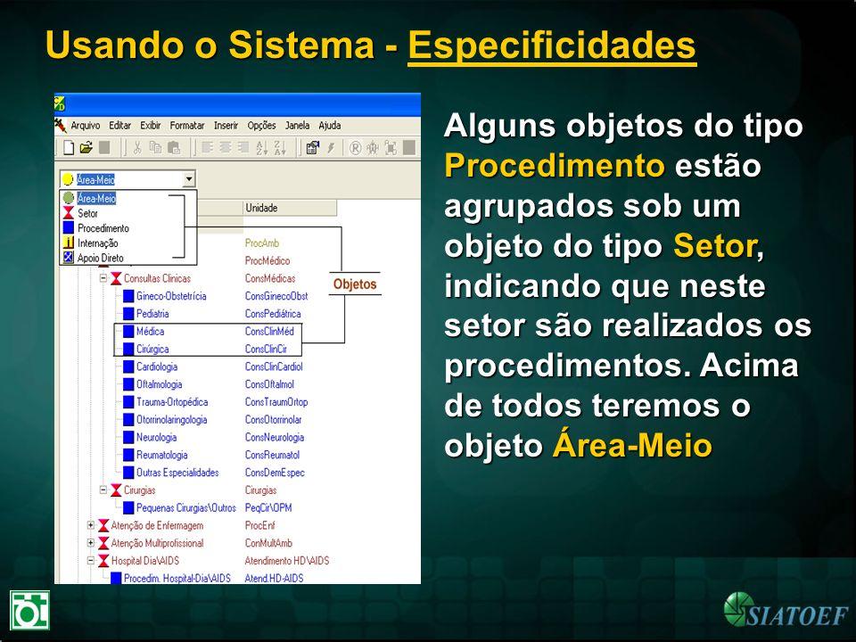 Usando o Sistema - Usando o Sistema - Especificidades Alguns objetos do tipo Procedimento estão agrupados sob um objeto do tipo Setor, indicando que n