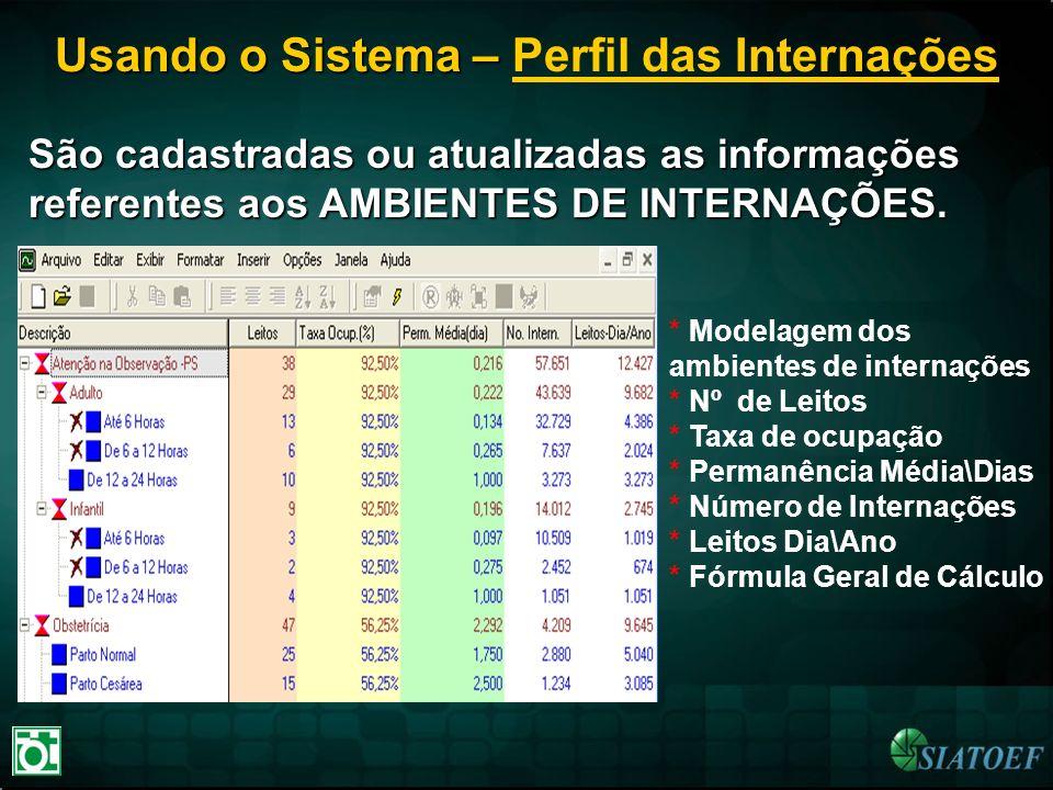 Usando o Sistema – Usando o Sistema – Perfil das Internações São cadastradas ou atualizadas as informações referentes aos AMBIENTES DE INTERNAÇÕES. *