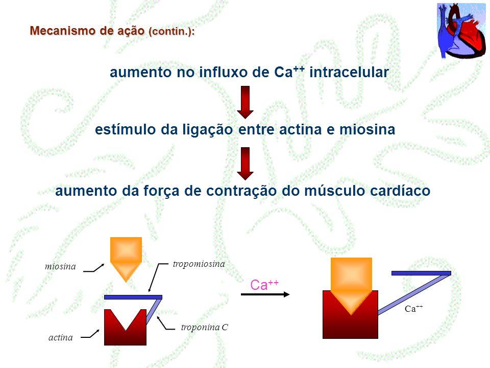 Mecanismo de ação (contin.): aumento no influxo de Ca ++ intracelular estímulo da ligação entre actina e miosina aumento da força de contração do músc