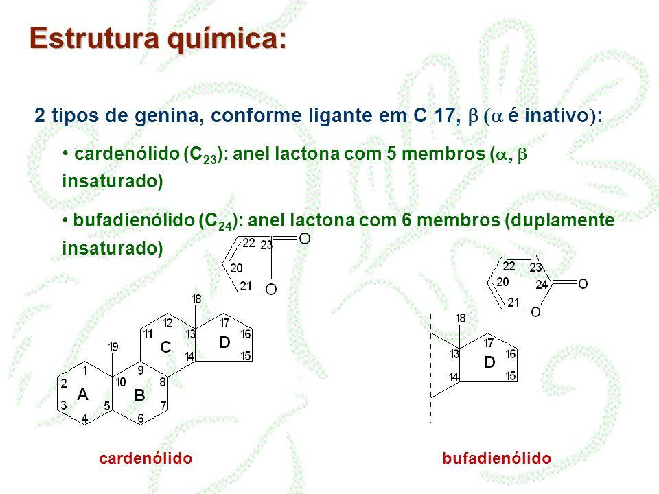 Estrutura química: 2 tipos de genina, conforme ligante em C 17, é inativo : cardenólido (C 23 ): anel lactona com 5 membros ( insaturado) bufadienólid