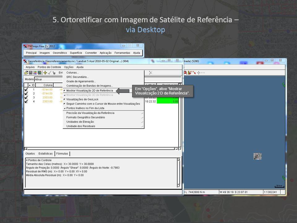 Em Opções, ative Mostrar Visualização 2 D de Referência. 5. Ortoretificar com Imagem de Satélite de Referência – via Desktop